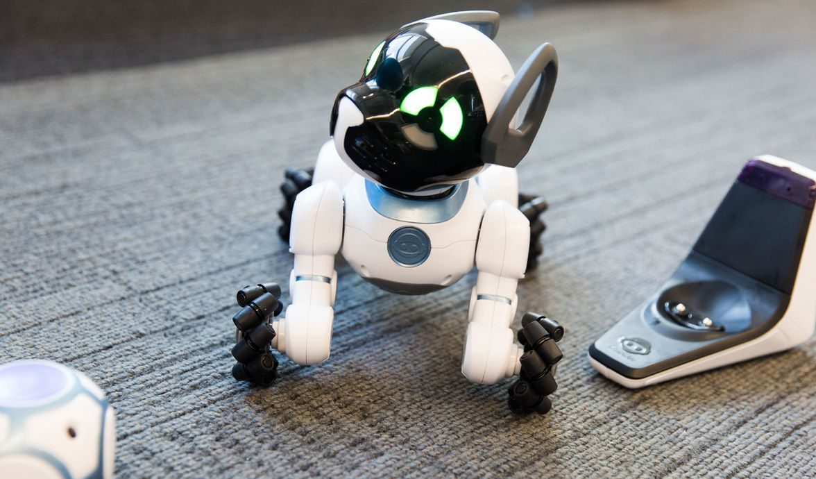 personalrobots-dog-robot